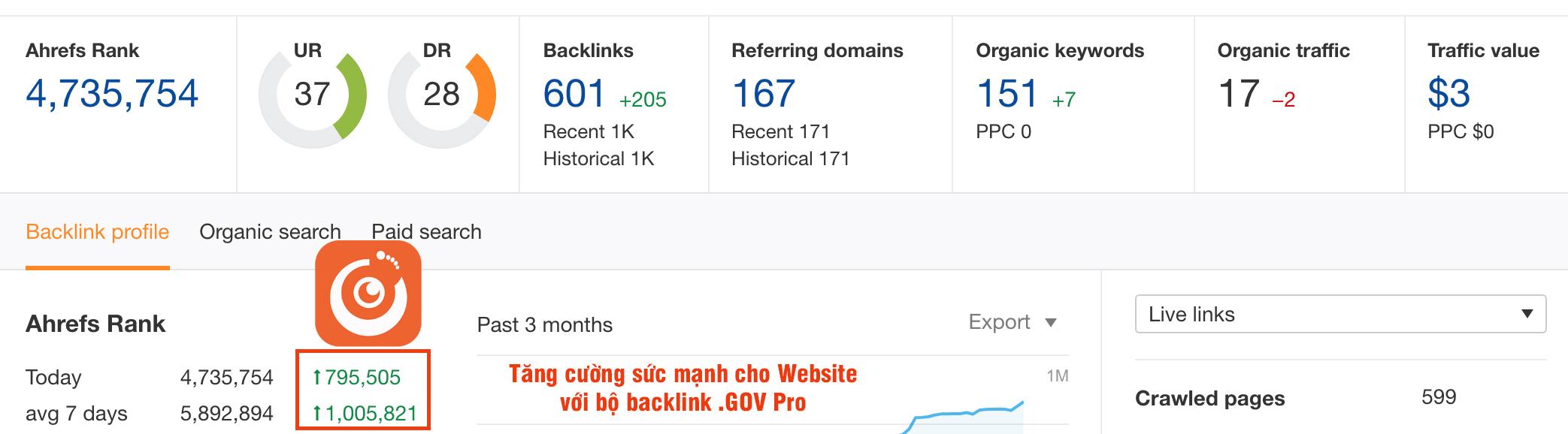 Dịch vụ Backlink GOV số 1 Việt Nam